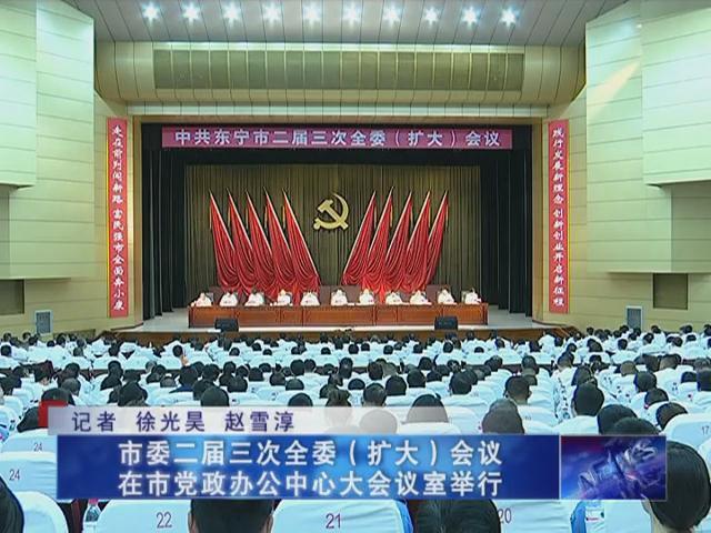 市委二届三次全委(扩大)会议在市党政办公中心